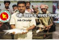 Rural Development and Cooperatives Division RDCD Job Circular 2019